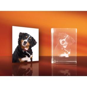 3D Laser Foto en el Cristal Viamant en formato Rectángulo 180mm