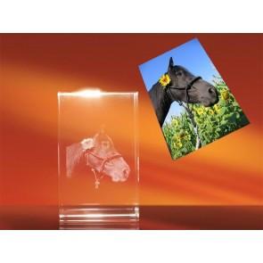 3D Laser Foto en el Cristal Viamant en formato Rectángulo 90mm